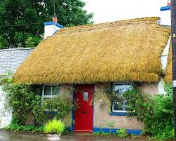 """Why, those tiles would even work in my Irish cottage,"" I added."