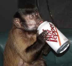 Diet Dr Pepper: monkey on my back